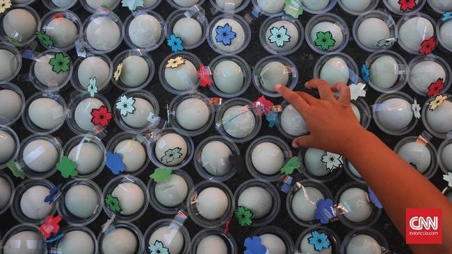 Sebanyak 2017 butir telur paskah dibagikan kepada masyarakat oleh umat Kristen Gereja Sidang Jemaat Allah Immanual Boyolali. (ANTARA FOTO/Aloysius Jarot Nugroho)