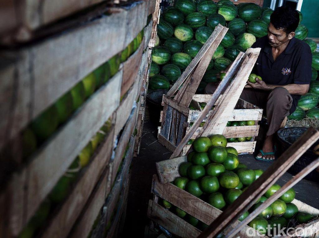 Pasar Induk Kramat jati Jakarta Timur terus bejalan secara dinamis. Lebih dari 2.400 pedagang sayur dan buah menggelar dagangannya nyaris 24 jam setiap hari.