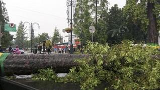 Angin Kencang di Kota Batu, 1 Tewas dan 1.216 Warga Mengungsi