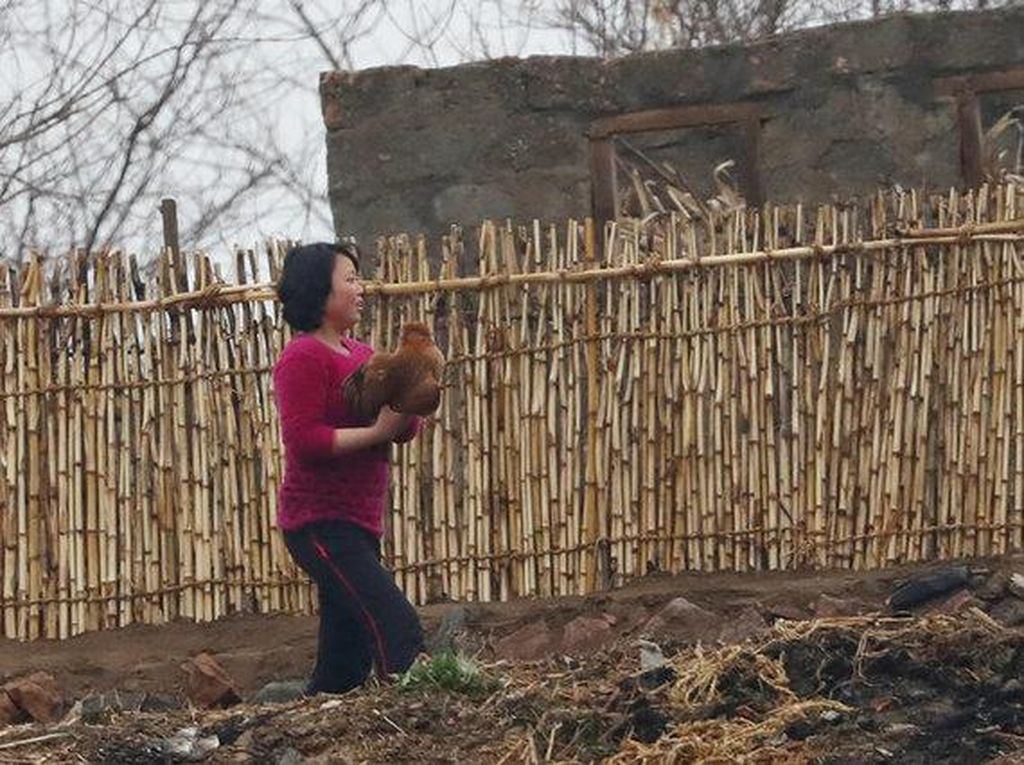 Seorang ibu membawa ayam. Foto: Reuters