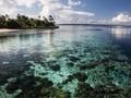 Ada 15 Acara Wisata di Wakatobi yang Harus Didatangi