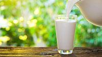 Meskipun susu memberikan kalsium dan mineral yang penting untuk kesehatan tulang dan fungsi otot. Susu juga cenderung meningkatkan peradangan yang menyebabkan peningkatan stres oksidatif, yaitu salah satu penyebab penuaan dini. Susu juga mengandung gula tinggi yang disebut laktosa, yang dapat meningkatkan pembentukan keriput karena kerusakan kolagen. (Foto: Istock)