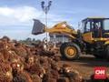Jokowi Didesak Tak Alirkan Dana Sawit untuk Subsidi Biodiesel