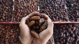 Kini, Impor Kurma dan Minyak Zaitun Palestina Bebas Bea Masuk