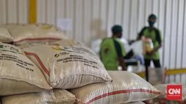 Pengamat: Impor Melalui Bulog Lebih Cepat dari PPI