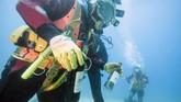 Selain punya temperatur konstan, penyimpanan di bawah laut dianggap efektif karena menghindarkan wine dari kerusakan akibat sinar UV. (AFP PHOTO / Boris HORVAT)