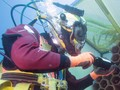 Laut Mediterania, Lokasi 'Eksotis' Penyimpanan Wine