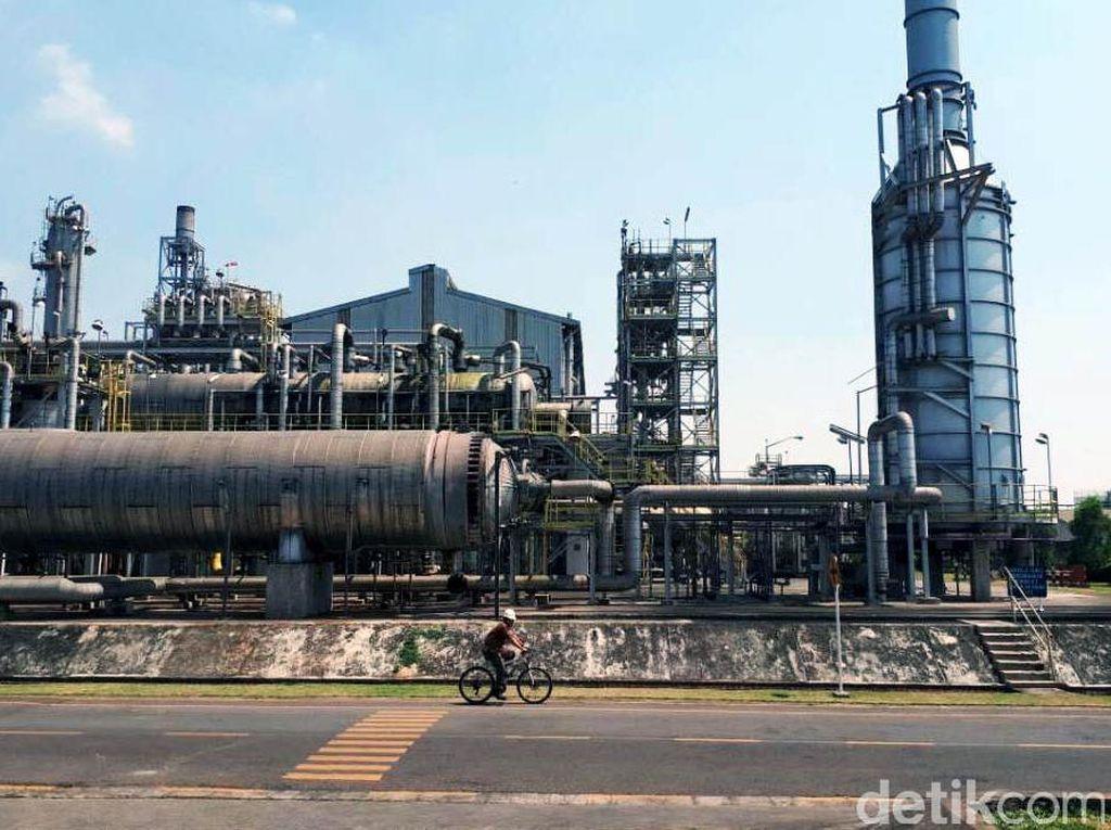 Pupuk Kujang menempati lahan seluas 550 hektar di sebuah kawasan yang terdiri dari kantor pusat, pabrik, perumahan karyawan, hingga sekolah.