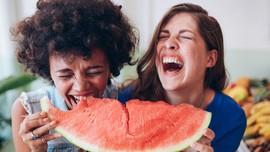 9 Manfaat Buah Semangka Buat Ibu Hamil