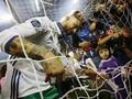 Sergio Ramos Girang Real Madrid Cetak Sejarah