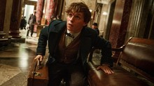 'Non-magique,' Sebutan Baru Non Penyihir 'Fantastic Beasts 2'