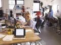 Tanaman Hias di Ruang Kerja Bisa Cegah Stres