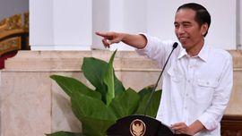 Hari Kopi Internasional, Jokowi 'Ngopi' Bareng Petani