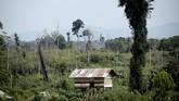 Penampakan sebuah rumah kayu tempat Orang Rimba tinggal. Orang Rimba mengeluhkan semakin sempitnya lahan permukiman dan buruan mereka karena semakin terdesak dengan pembukaan lahan perkebunan. (AFP PHOTO / GOH CHAI HIN)