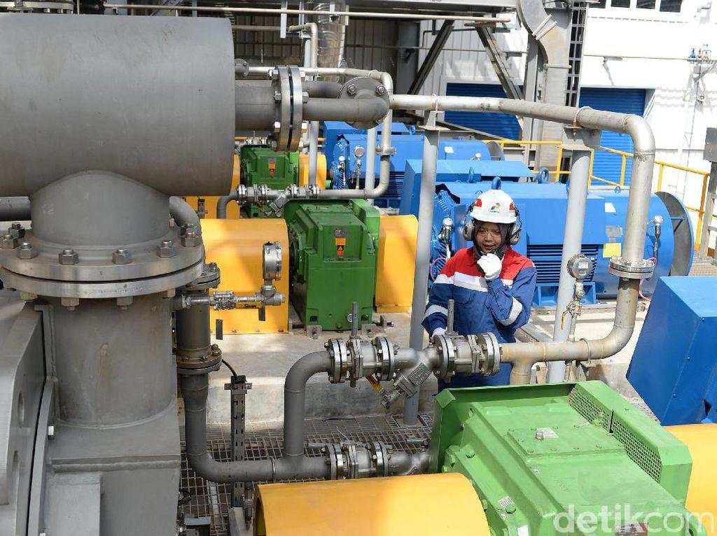 Potensi panas bumi di Provinsi Lampung sekitar 2.867 MW atau sekitar 10 persen dari total potensi panas bumi Indonesia dan menduduki peringkat ke-tiga setelah Provinsi Jawa Barat dan Sumatera Utara.