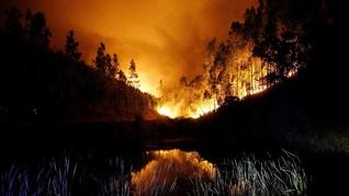 Kebakaran Hutan, Kanada Berlakukan Kondisi Darurat