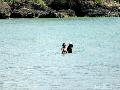 2 Puteri Obama Berenang 4 Jam di Pantai Jimbaran