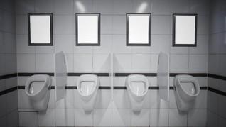 Norwegia Punya Toilet Berpemandangan Fotogenik