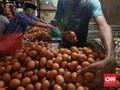 Mentan Klaim Stok Telur dan Daging Ayam Jelang Ramadan Cukup