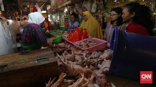 Jelang Ramadan, Harga Ayam Naik dan Diprediksi Terus Meroket
