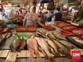 Menteri Susi Ingatkan Stok Ikan Jangan Susut Lagi