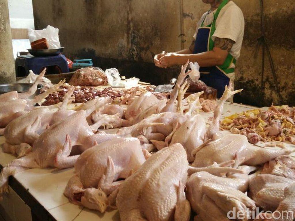 Harga Ayam Naik! Ganti dengan Telur dan Ikan yang Proteinnya Hampir Sama