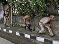 India Cabut Status Daerah Istimewa dari Kashmir