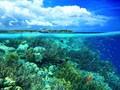 Sektor Pariwisata di Manado Meningkat Drastis