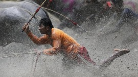 'Barapan Kebo' Hipnotis Pengunjung Festival Pesona Moyo