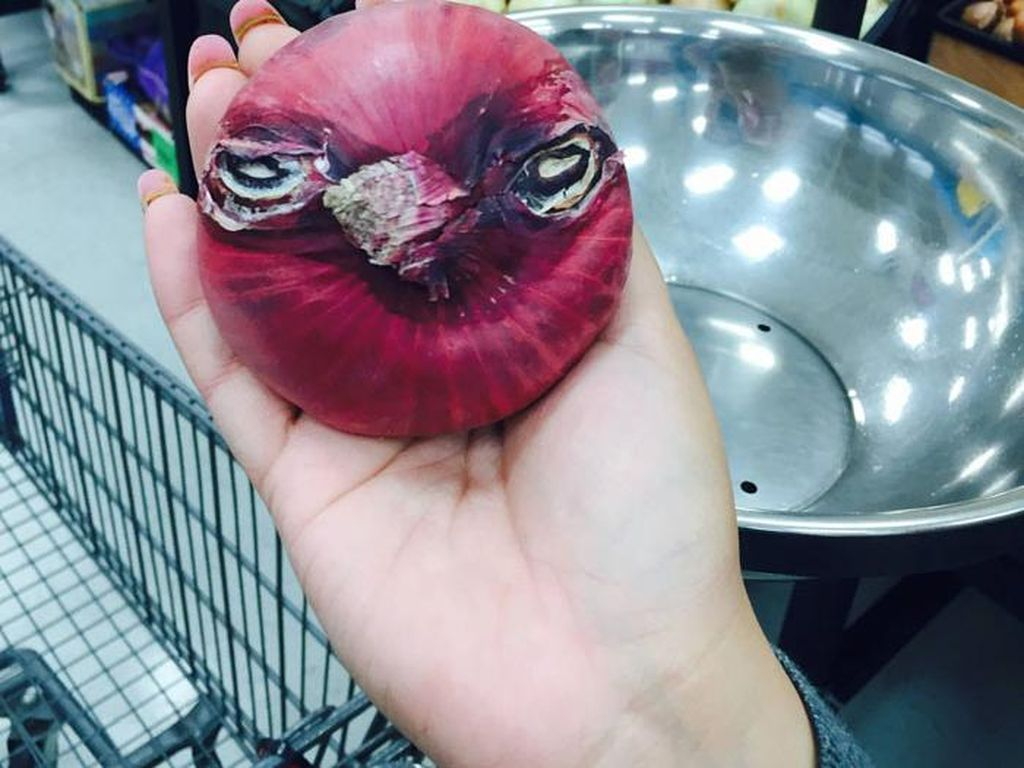Ingat game Angry Bird yang sempat populer? Nah, bawang bombay ini agak mirip dengan karakter itu.