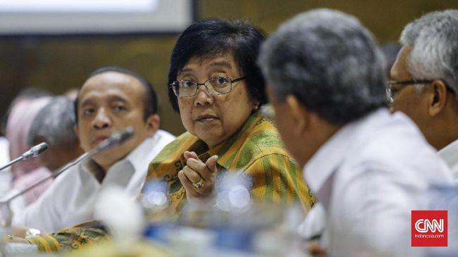 Pemerintah Lepas 977 Ribu Hektare Tanah untuk Reforma Agraria