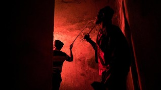 Ketika Apartemen Tua Digusur oleh Ratusan Semut Merah