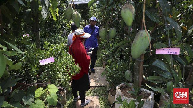 Bekas Lokalisasi Kedungbanteng Bakal Disulap Jadi Agrowisata