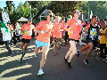 Banyuwangi Ijen Green Run 2017 Berikan Pengalaman Seru
