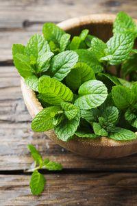 Peppermint mengandung minyak mentol yang berperan sebagai anti-spasmodik, berfungsi untuk relaksasi otot-otot perut. (Foto: Thinkstock)