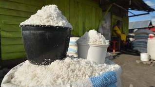 PT Garam Usul Pemerintah Beri Subsidi demi Stabilisasi Harga