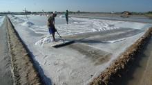 Usai Beras, Pemerintah Bakal Impor Garam Industri