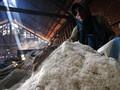 KKP Tentukan Harga Pokok Penjualan Garam Sebelum Panen Raya