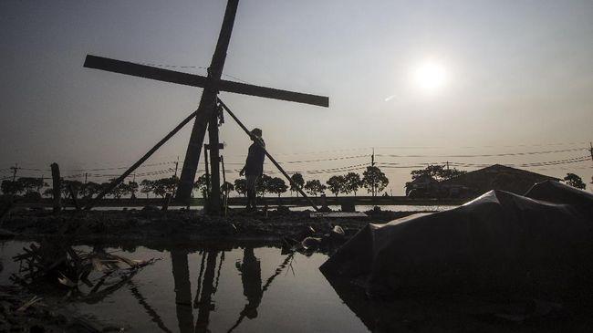 Kurang Pasokan Garam, 1.200 Pekerja 'Dirumahkan'