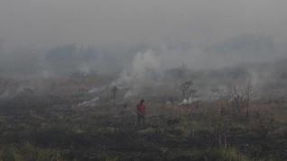 BMKG Deteksi 10 'Hotspot' Indikasi Kebakaran Hutan Riau