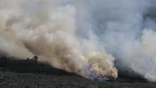 Wiranto Sebut Kebiasaan Warga Membuka Lahan Memicu Kebakaran