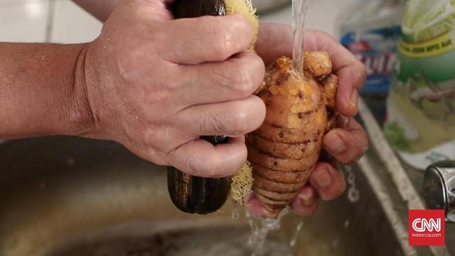 Proses membersihkan bahan baku jamu seperti temu lawak, harus dilakukan sebelum pengupasan atau pemarutan. Hal tersebut dilakukan untuk mejaga bahan tetap terjaga secara higienis. (CNN Indonesia/Andry Novelino)