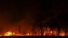 LAPAN Pantau 526 Titik Api di Kalbar, Tak Ketahui Penyebabnya