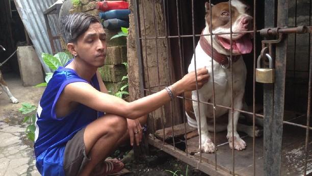 Foto: Aneka Kejadian Heboh Indonesia, Foto ke-14 Bikin Iri