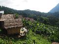 Kemenpar Beri Penghargaan bagi Homestay di Indonesia