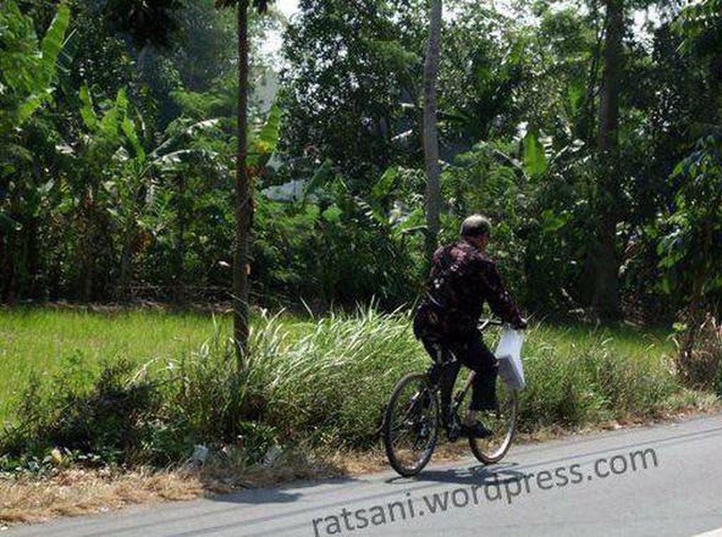 Buya Syafii hingga saat ini masih mengayuh sepeda menuju kampus untuk mengajar. Foto: Dok. ratsani.wordpress.com