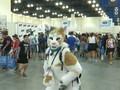 VIDEO: Festival CatCon, Ajang Berkumpul Pecinta Kucing Dunia