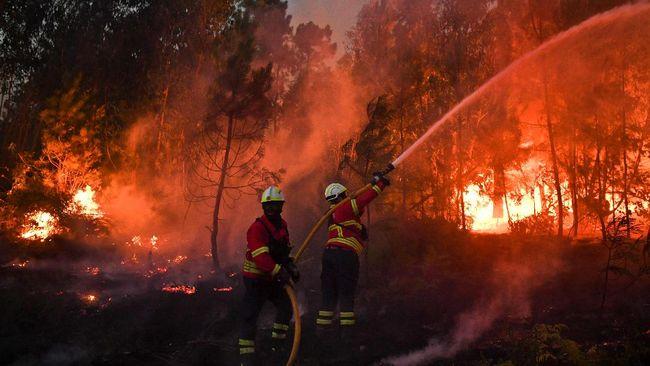 Kebakaran Besar di Portugal, 2.000 Warga Desa Terperangkap