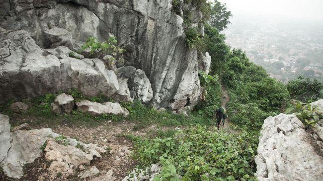 Gua dengan Lukisan Batu Tua di Sulawesi Terancam Penambangan