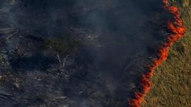 FOTO: Hitam Pekat Dampak Pembakaran Hutan Amazon